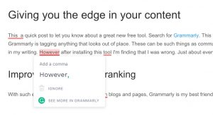 Grammarly grammar checking - Sunshine Coast Designer Website Designer
